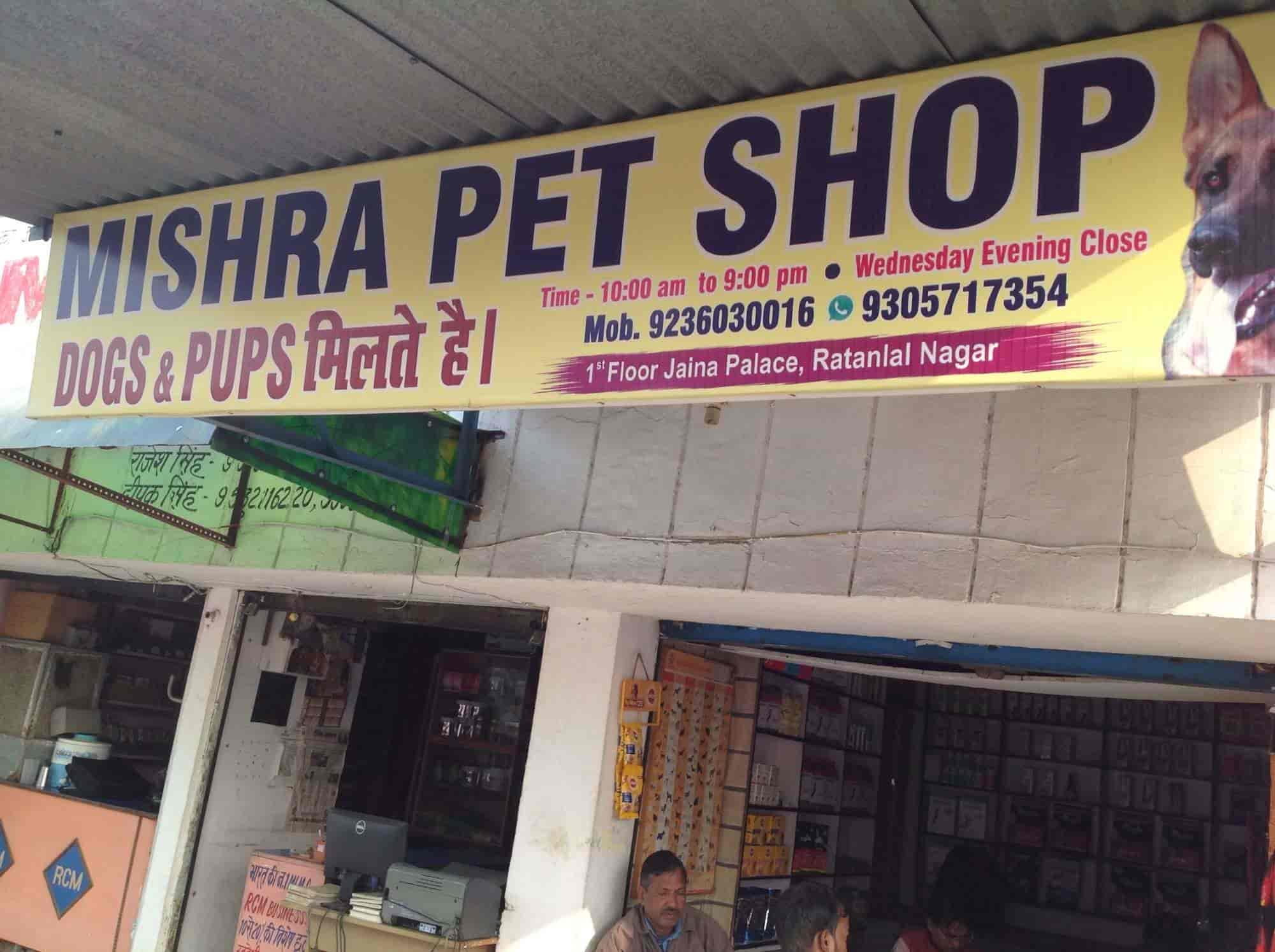 Mishra Pet Shop, Kalyanpur - Pet Shops For Dog in Kanpur