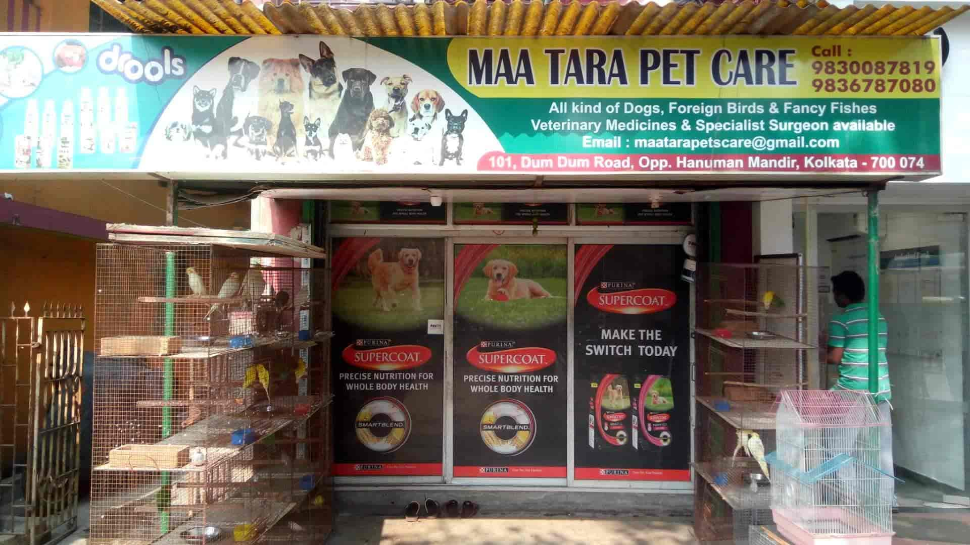 Maa Tara Pet Care, Motijhil - Pet Shops in Kolkata - Justdial