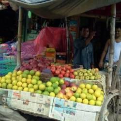 Ali Ulla Fruit Bhandar Lauhati Fruit Vendors In Kolkata Justdial