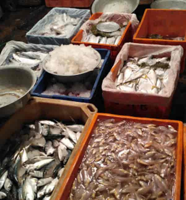 Patipukur Fish Market Owners Association, Belgachia