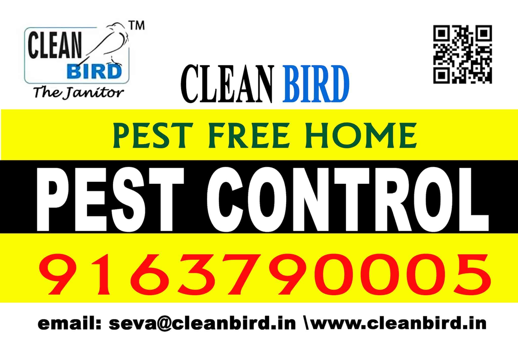 Clean Bird Maintenance & Services LLP, Motijhil - Residential Pest