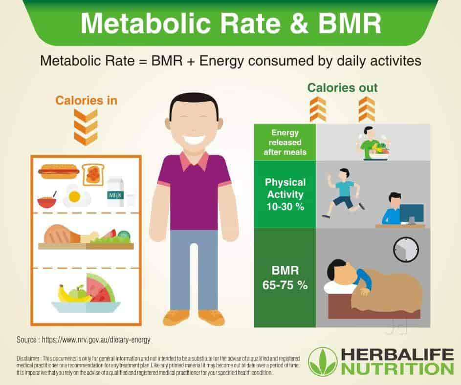 Herbalife Weight Loss Daily Plan Weightlosslook