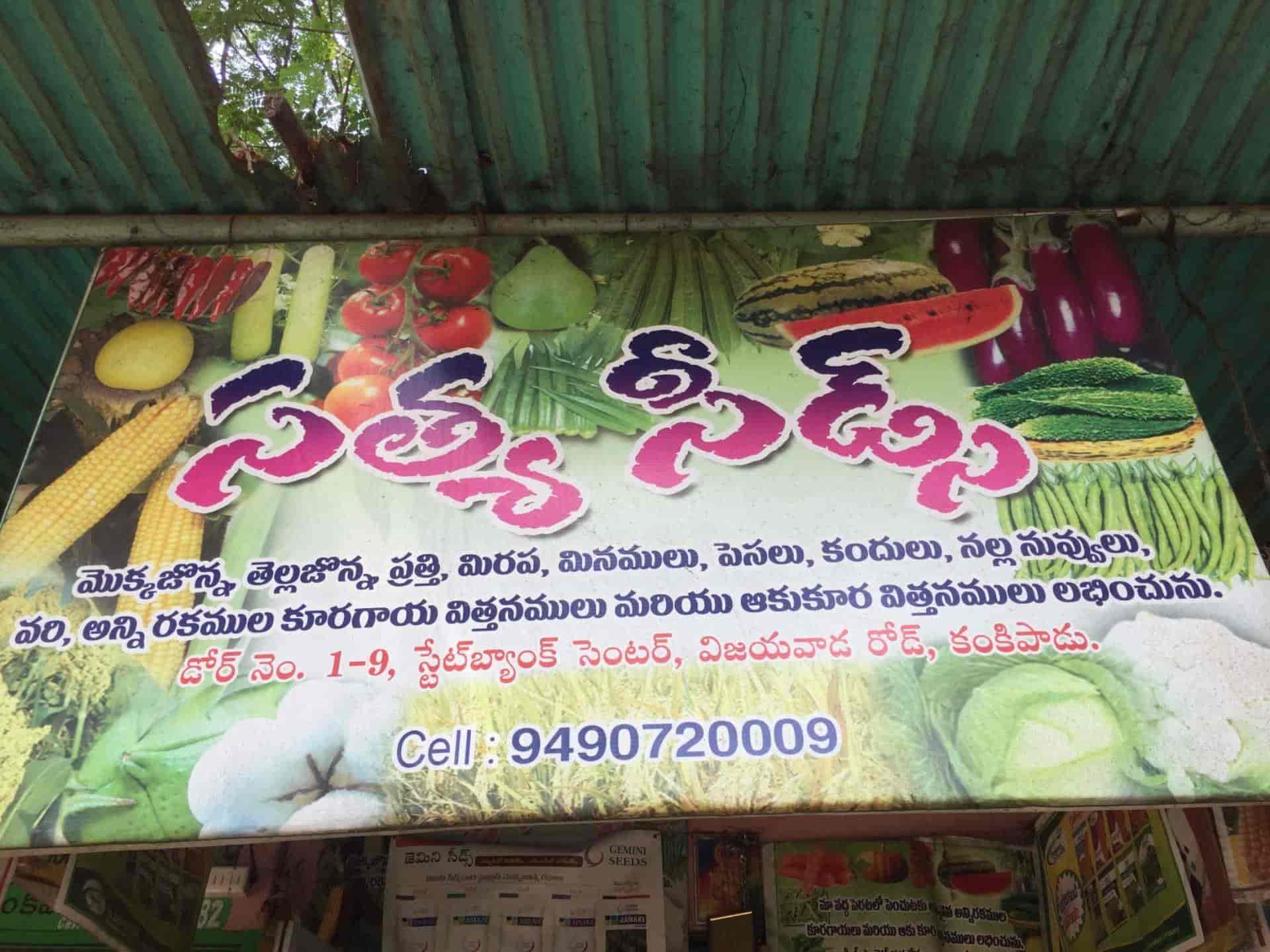 Satya Seeds, Kankipadu - Agriculture Seed Dealers in Krishna