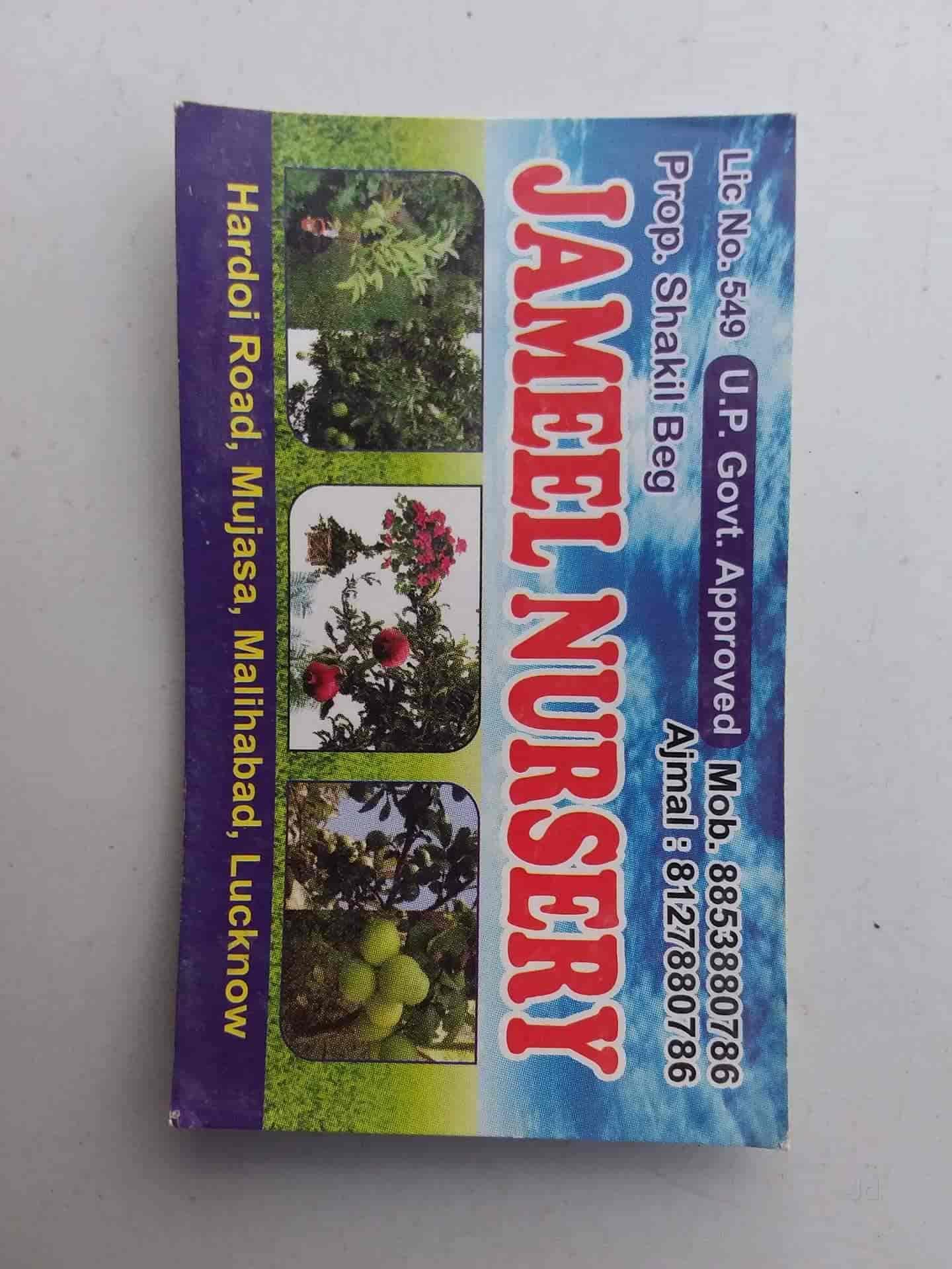 Jameel Nursery, Malihabad - Fruit Plant Nurseries in Lucknow