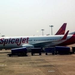 Spicejet Airlines (Airport Office), Perungudi - Domestic Airlines in