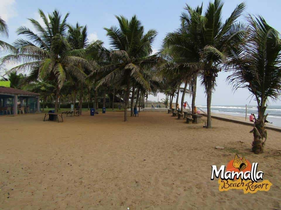 Mamalla Beach Resort Mamallapuram 3 Star Hotels In Mahabalipuram Justdial