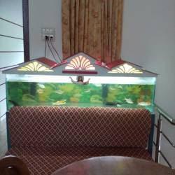 Blue Sea Aquarium Kinnigoli Aquariums In Mangalore Justdial