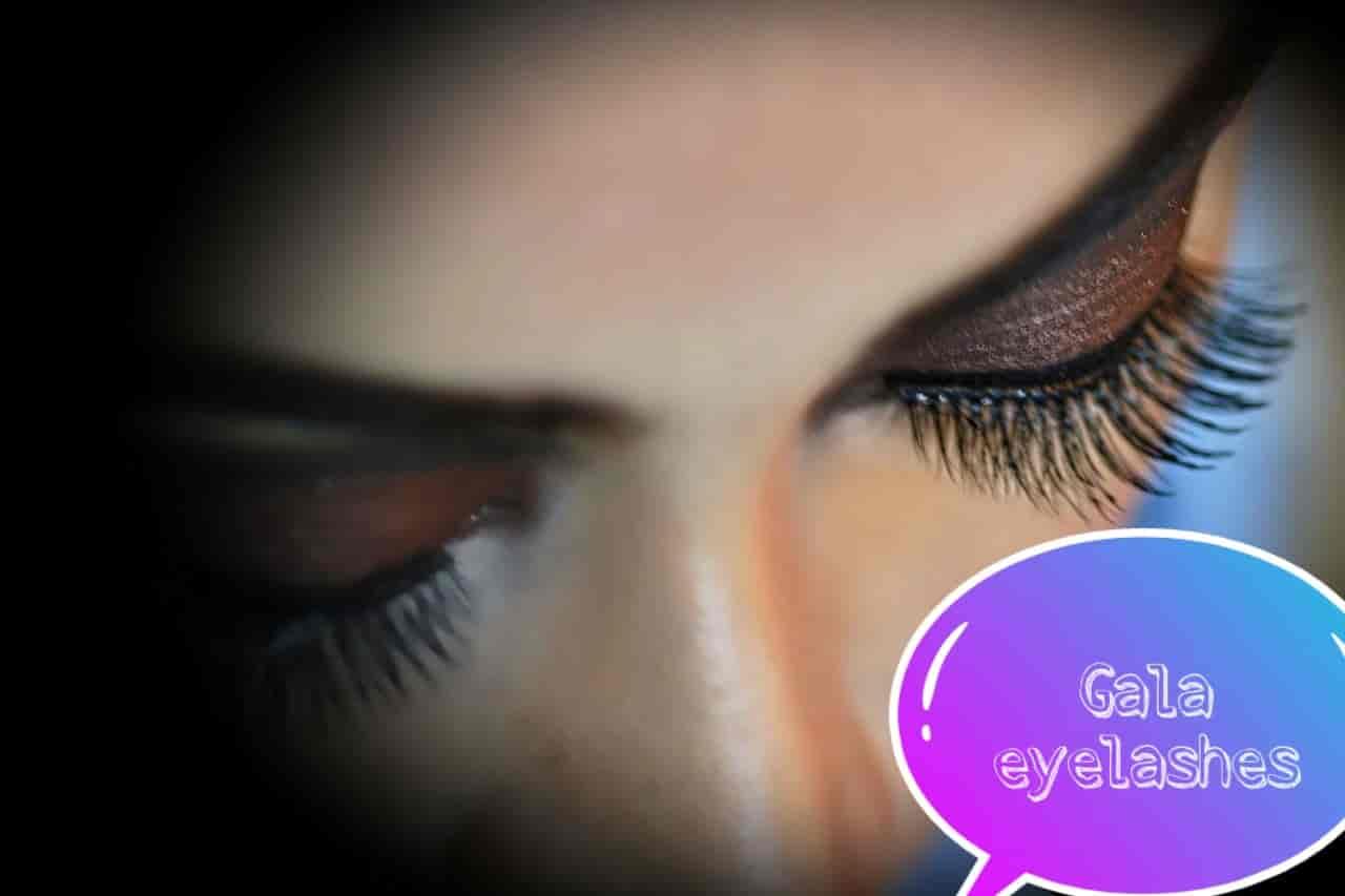 Gala Eyelashes Artistry Nalasopara East Beauty Product Dealers In