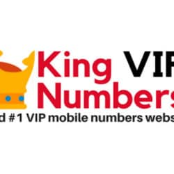 Vip Mobile Numbers, Udaipur City - VIP Mobile Number Dealers in