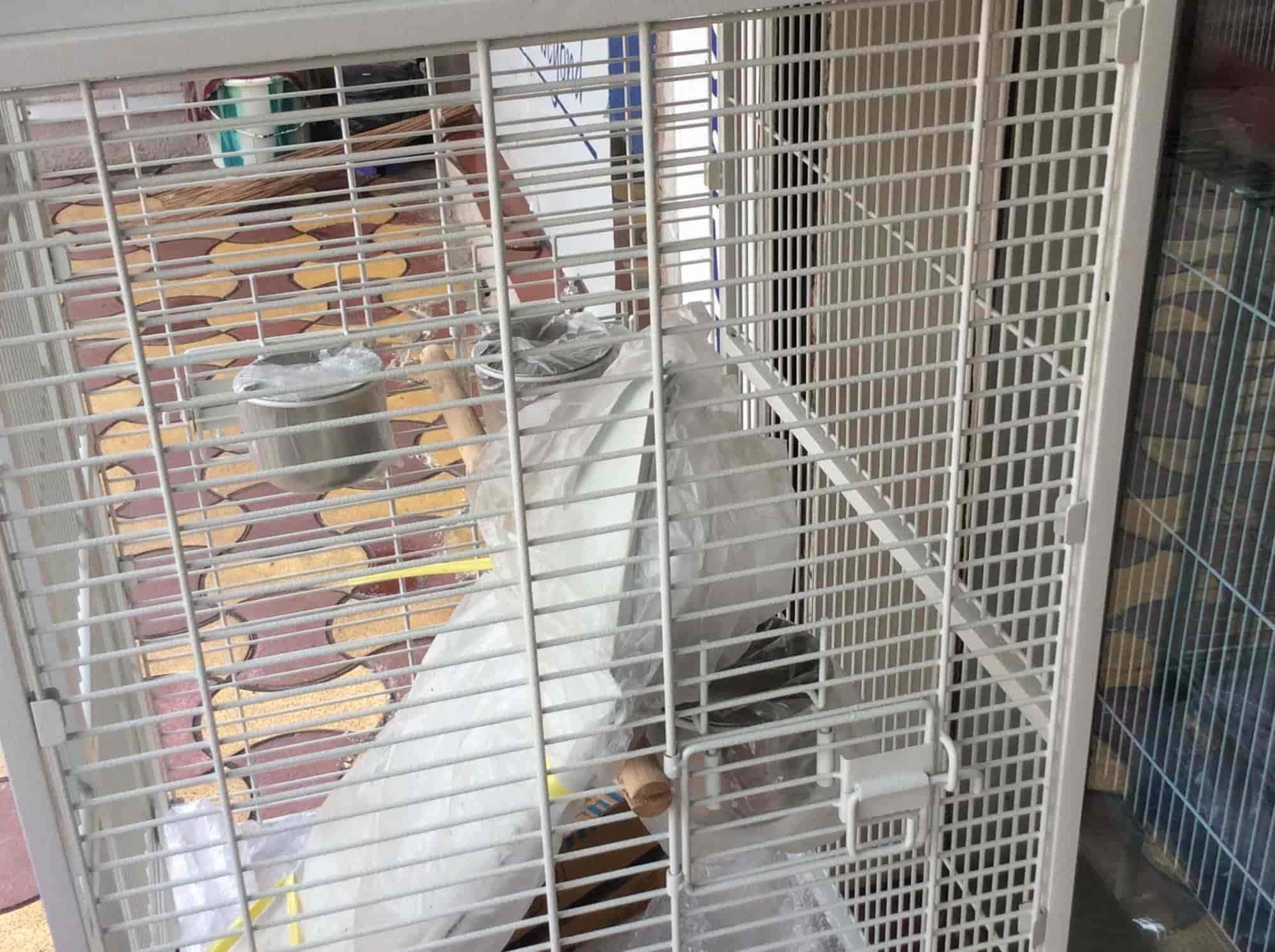 Rathods Birds Paradise, Goregaon West - Pet Shops in Mumbai