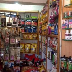 Mysore Golden Kennel, Srirampura - Pet Shops in Mysore