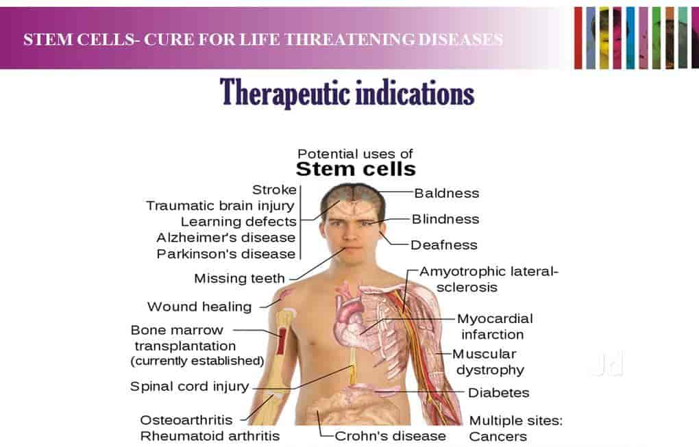 Stem Cells Banking Photos, Parvathipuram, Nagercoil