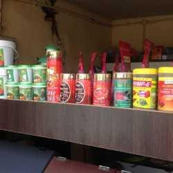 Shree Om Pet Shop, Mahal - Pet Shops in Nagpur - Justdial
