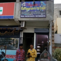 Deekshitha Pet Shopee, Ayodhya Nagar - Pet Shops in Nagpur - Justdial