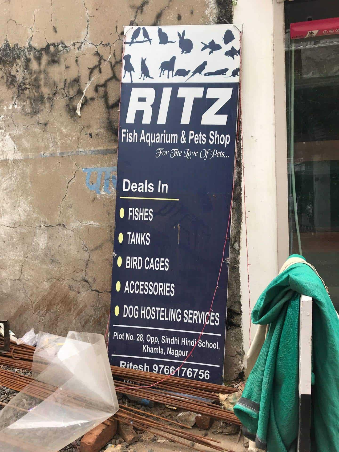 Ritz Fish Aquarium & Pets Shop, Near Sindhi Hindi School - Aquariums