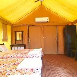 Jai Tiger Resort, Umred - Resorts in Nagpur - Justdial