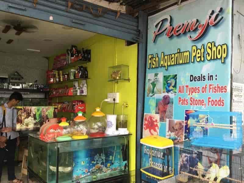 Premji Fish Aquarium And Pet Shop, Siraspeth - Pet Shops in Nagpur