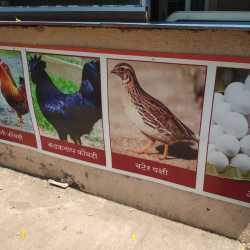 Special Gavthi Rassa The Family Restaurant, Kharghar, Mumbai