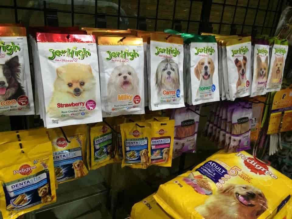 PET Palace - Online Pet Store - Pet Shops in Navsari - Justdial