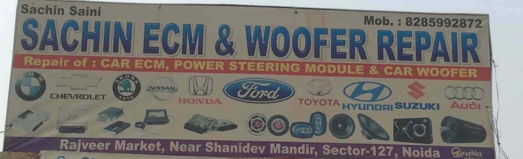 Sachin ECM Woofer Repair Photos, Noida Sector 66, Noida