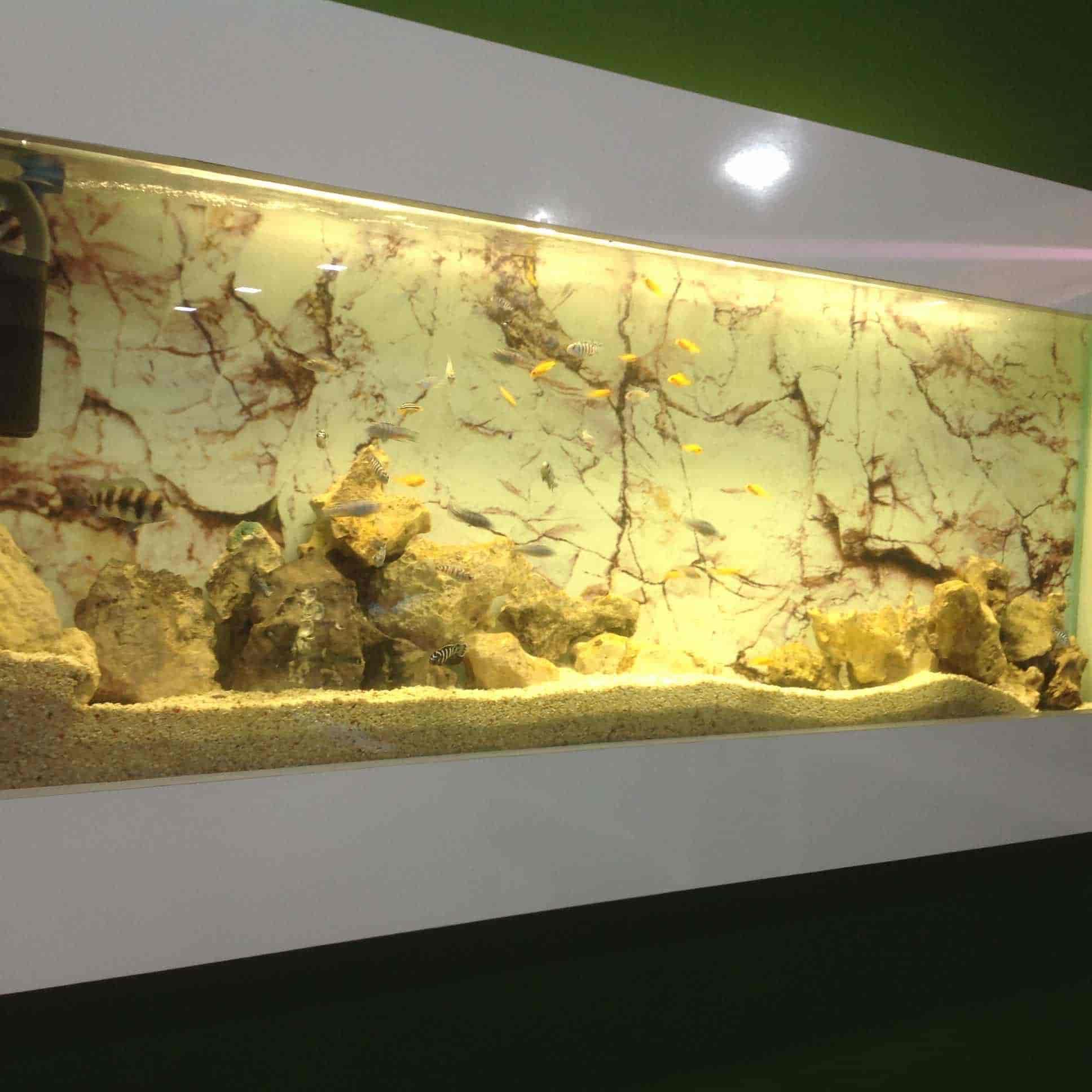 Enchanting Aquarium Rock Wall Decoration Gallery - Art & Wall Decor ...