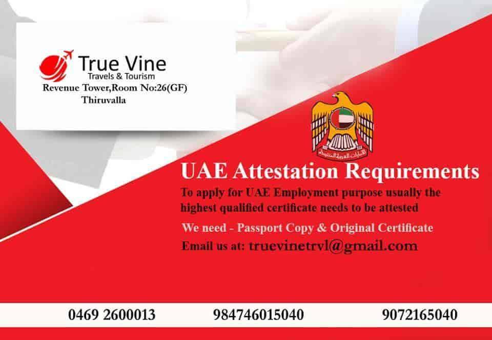 True Vine Travel And Tourism, Thiruvalla - Travel Agents in