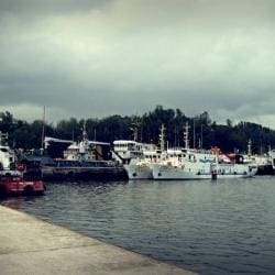 Phoenix Bay Jetty in Phoenix Bay, Port Blair - Justdial