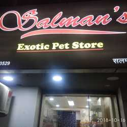 Salman's Exotic Pet Store, Wanowrie - Pet Shops in Pune - Justdial