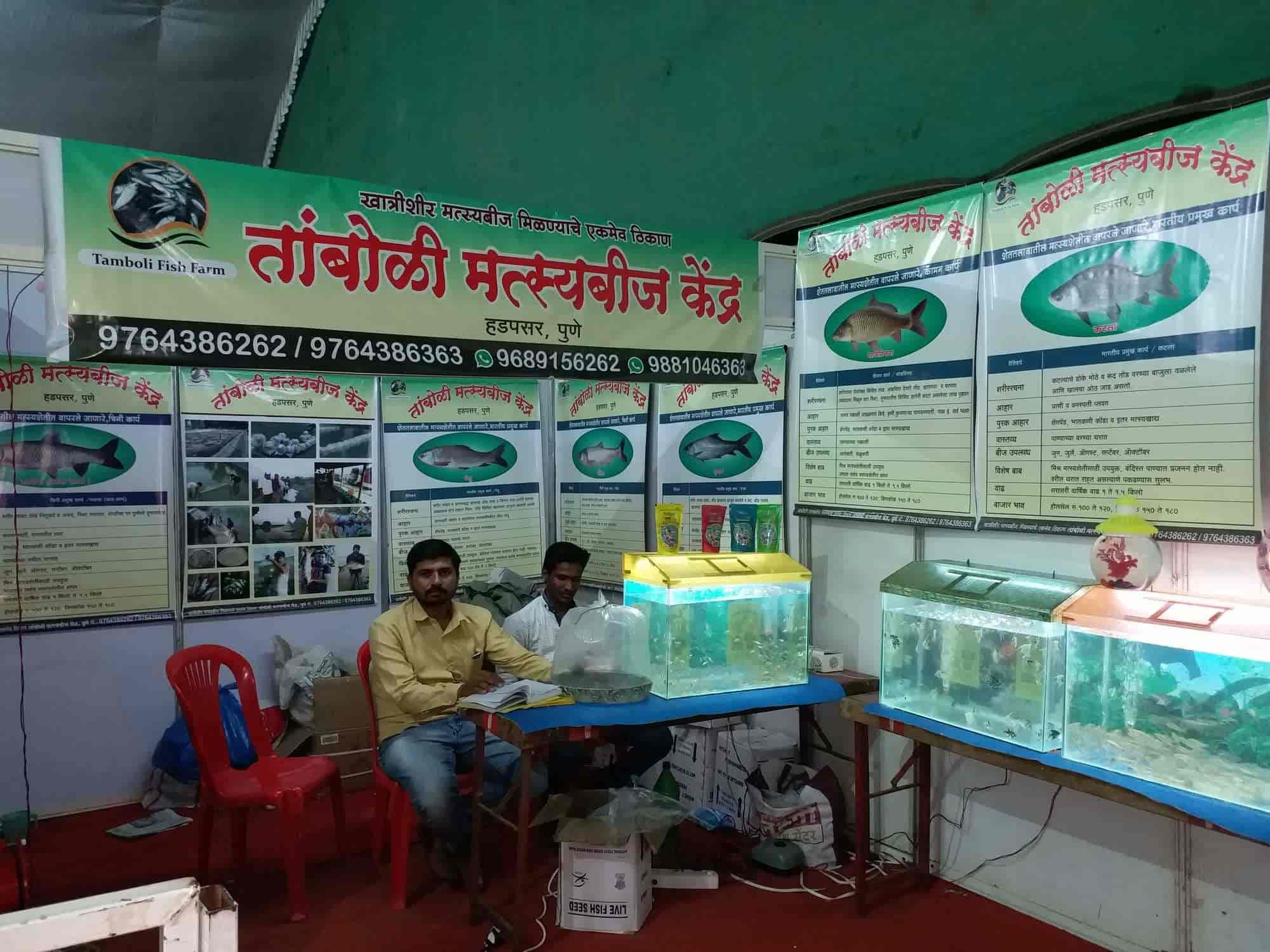 Tamboli Fish Seed Suppliers, Hadapsar - Fish Seed