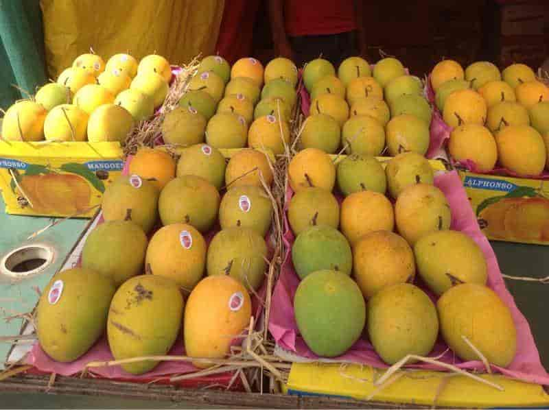 Asma Fruit Supply Photos, Wakad, Pune- Pictures & Images Gallery
