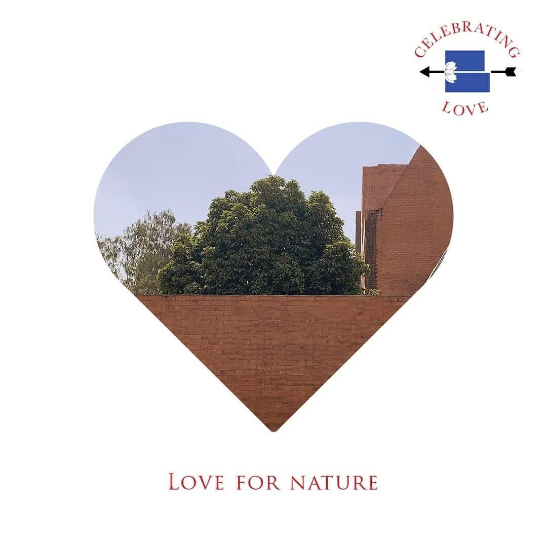 Brick School Of Architecture Reviews, Undri, Pune - 103