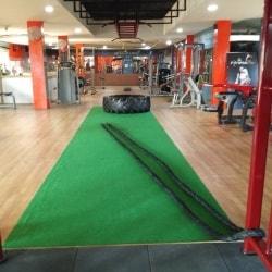 Fitness plus jim in kharsia raigarh chhattisgarh justdial