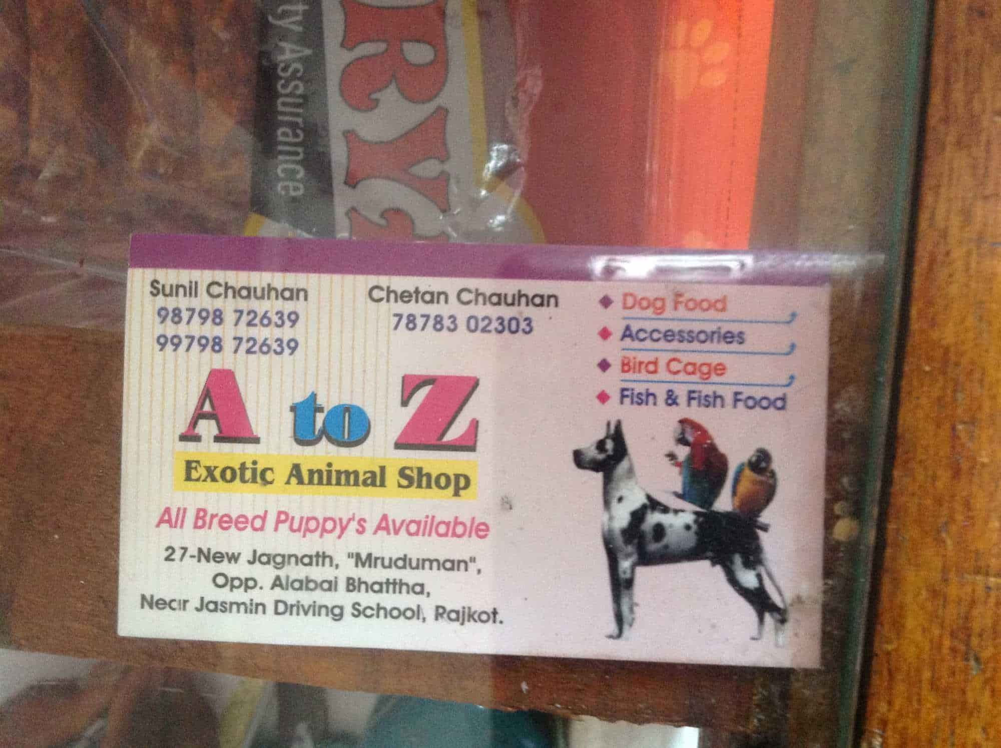 A To Z Exotic Animal Shop Photos New Jagnath Road Rajkot Pictures
