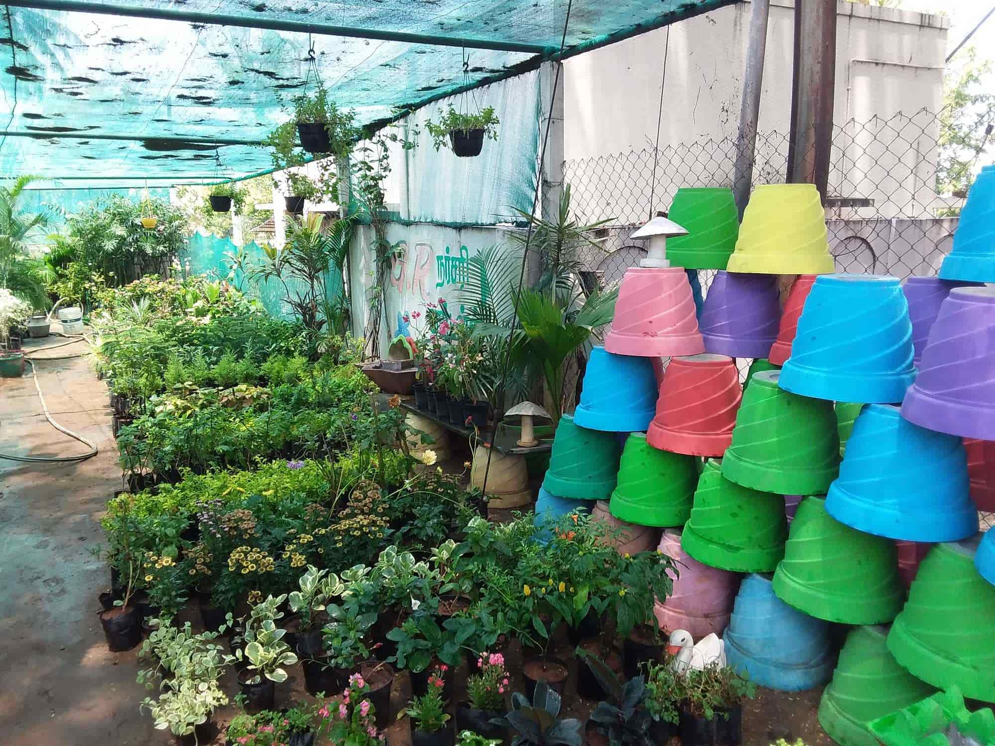 G R Nursery Gardens Photos Odayapatti M Plant Nurseries