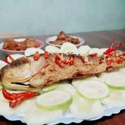 Gladly Bengali, Hakimpara, Siliguri - Restaurants - Justdial