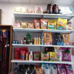 J J Pet Shop, Varachha Road - Pet Shops in Surat - Justdial