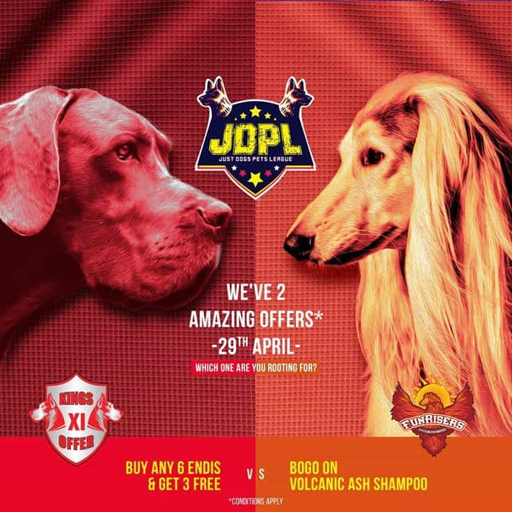 Just Dogs - Pet Care Takers - Book Appointment Online - Pet