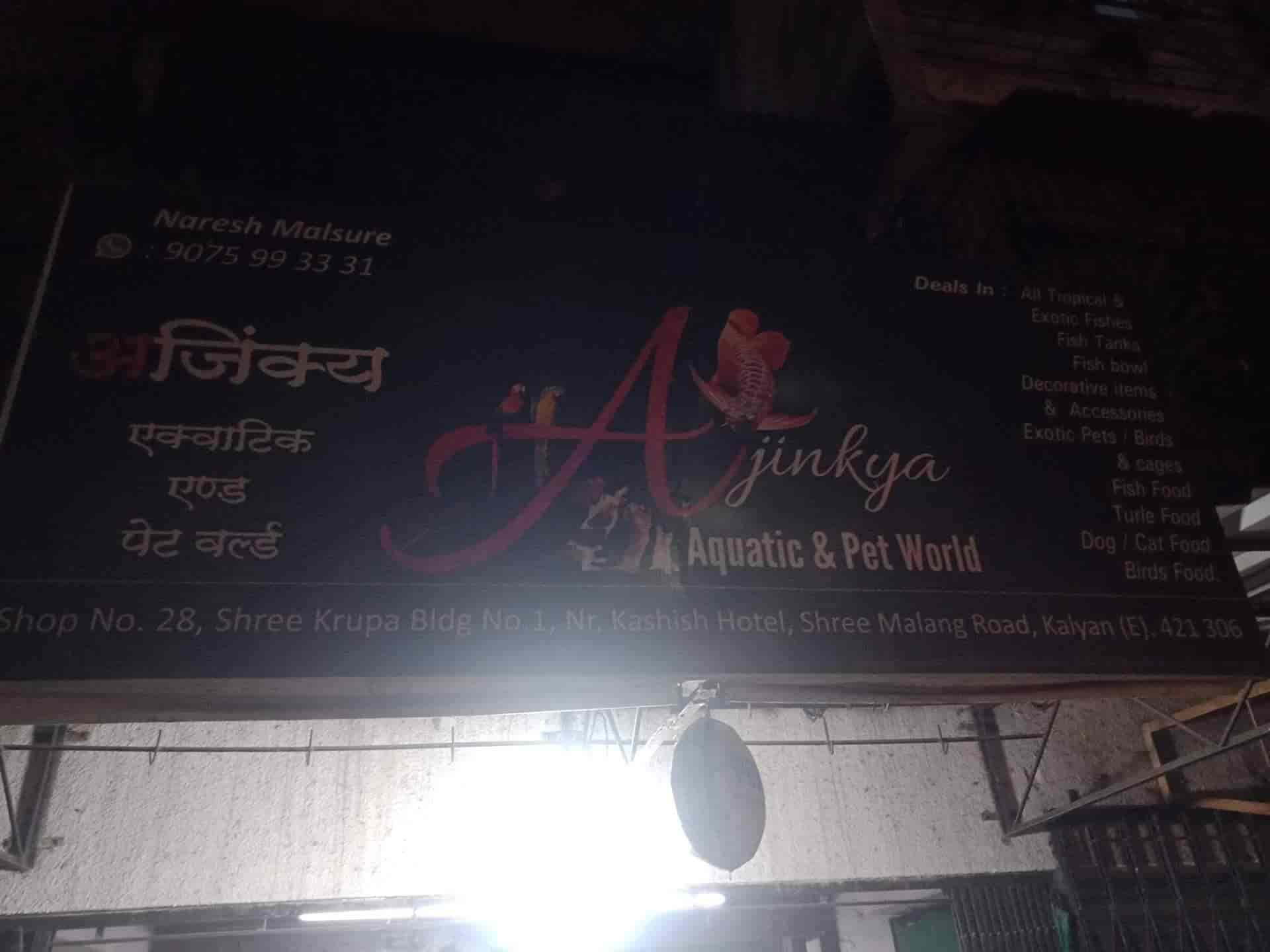 Ajinkya Aquatic Pet World Kalyan East Pet Shops For Dog In Thane Mumbai Justdial