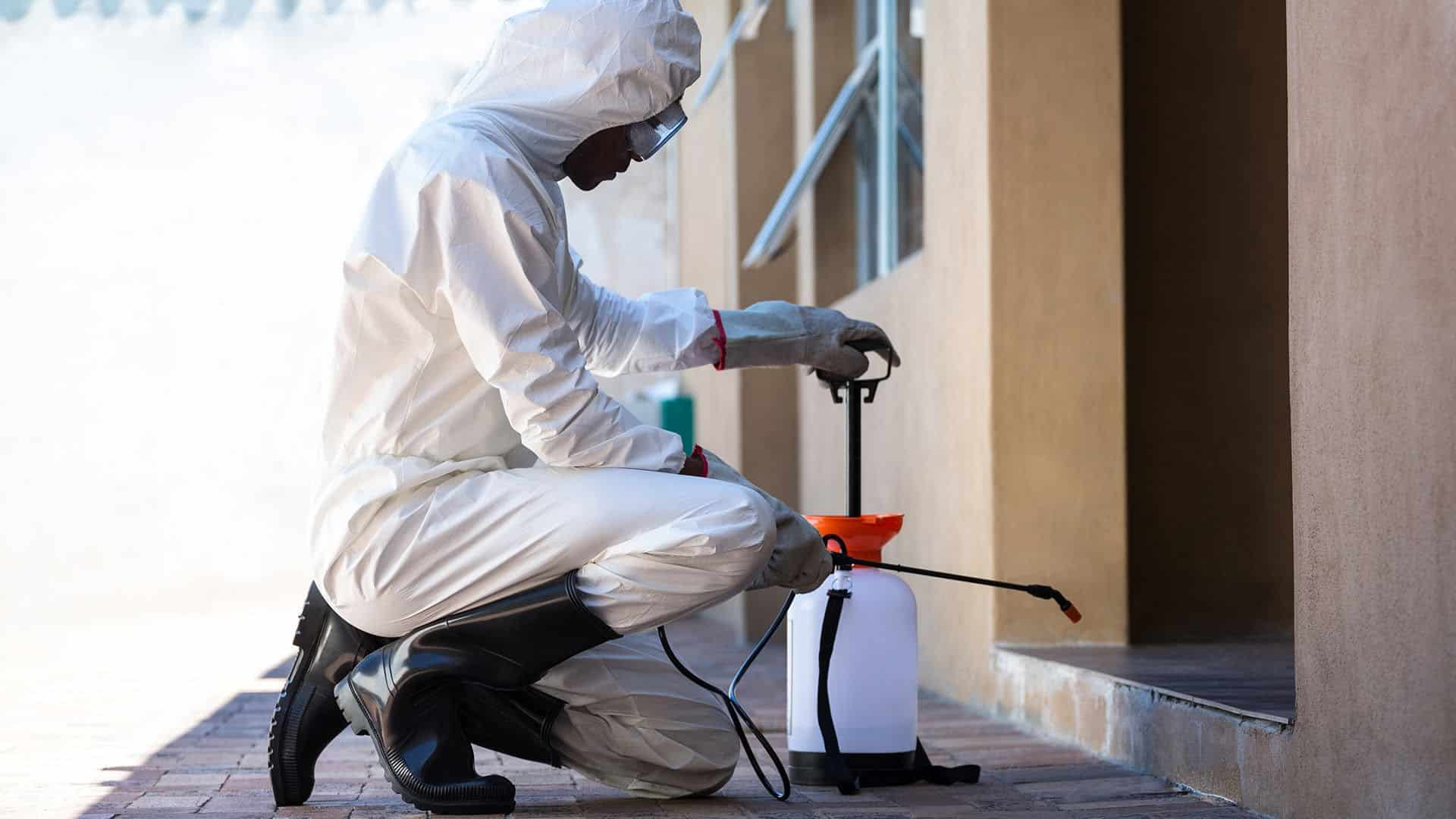 Residential Pest Control in Delhi NCR