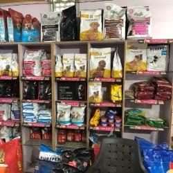 D D Kennel & Pet Shop, Sigra - Pet Shops For Dog in Varanasi - Justdial