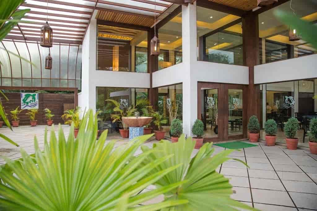 Treebo Turtle Beach Resort, Morjim - Hotels in Goa - Justdial